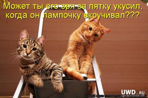 1332386877_kotomatrix_08