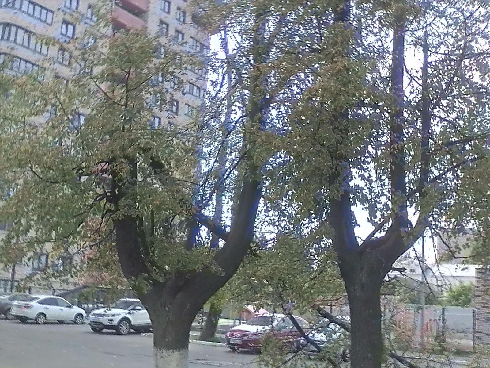 г. Ижевск, ул. Льва Толстого