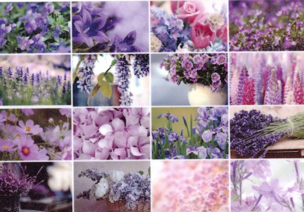 Цветы от Р иты