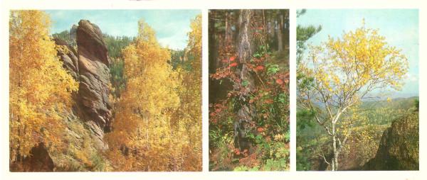 Осенний флешмоб
