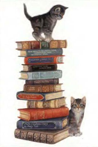 Котята на книжках