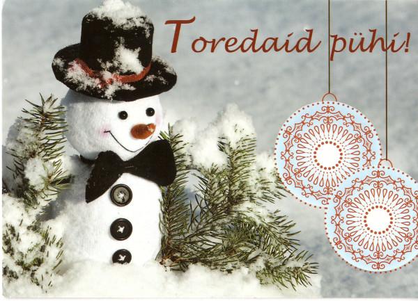 Снеговик из Эстонии