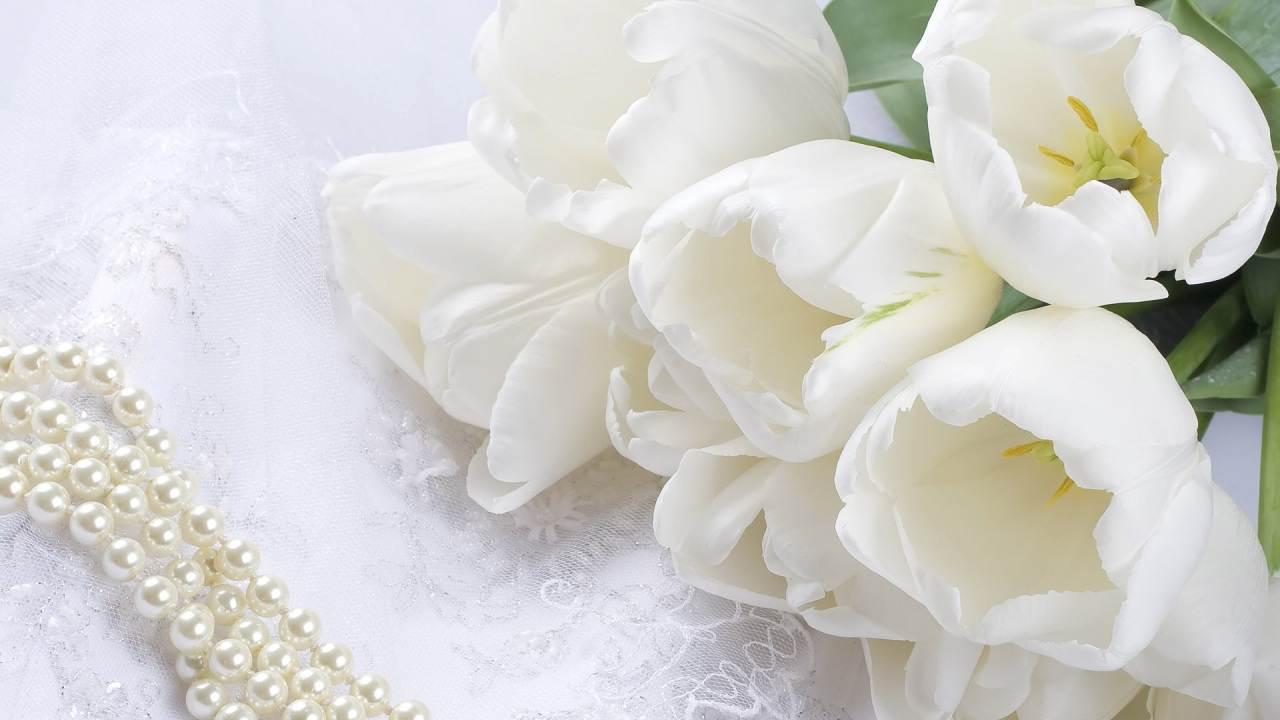 Белые цветы картинки 1