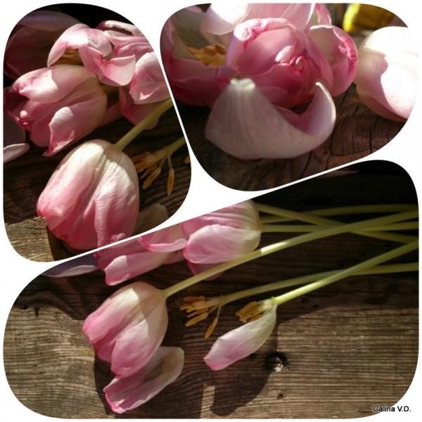 2014-04-24-22-24-00_deco