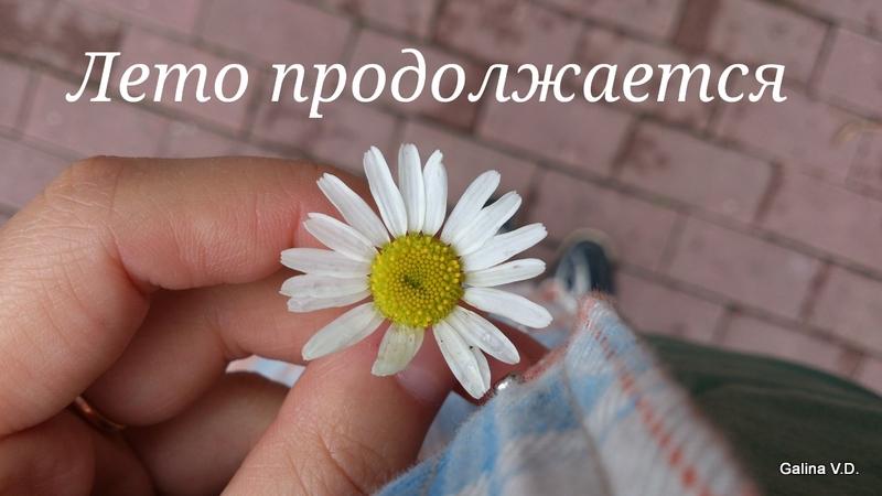 2014-08-17-17-56-51_deco