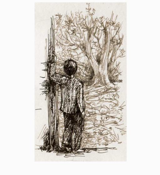 иллюстрации к книге, издательство Самокат, художник: Пастернак Мария