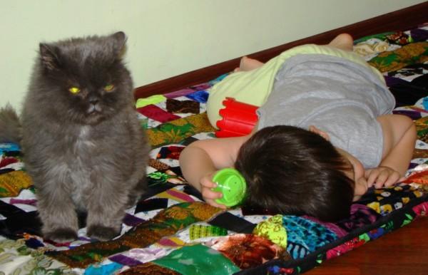 котик и сыночек