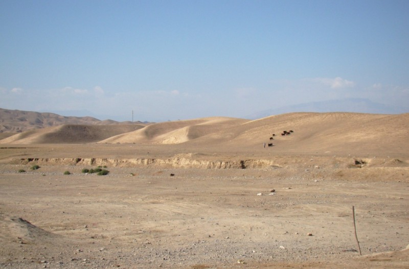 Дорога_08_Узбекистан