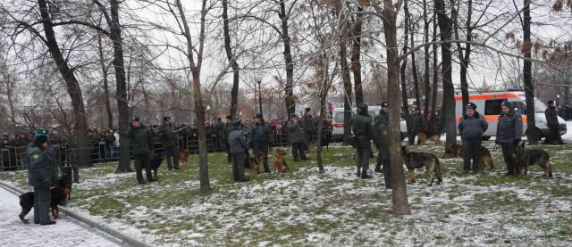 Собаки на митинге на Болотной площади 10 декабря 2011