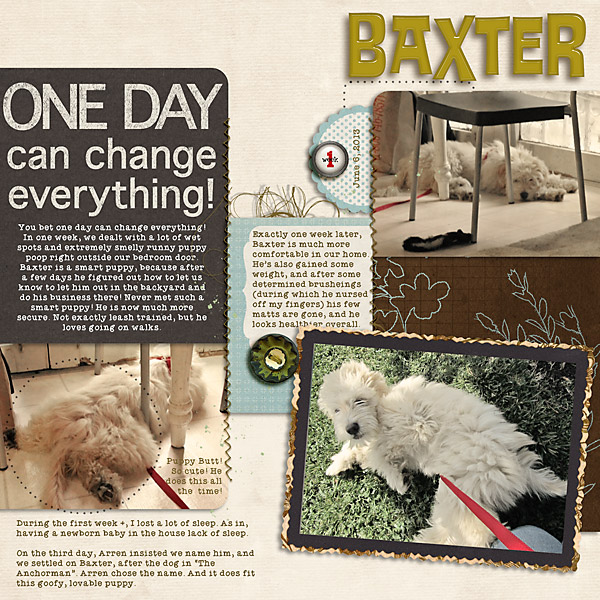 2013_06_06-Baxter-after-7-d