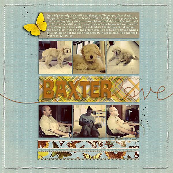 2013_06_08-Baxter-Love-copy
