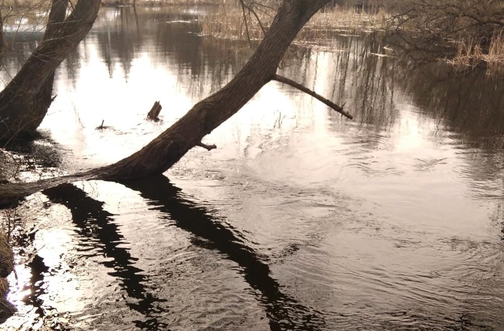 Здесь река делает крутой поворот и течение очень быстрое