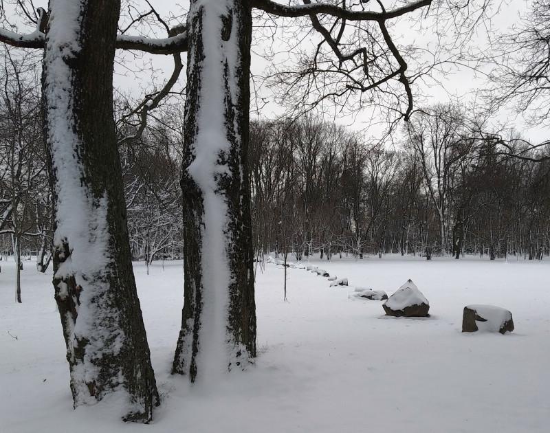 Я предположил, что линия из камней - граница между новым и старым парком. Старый - справа.