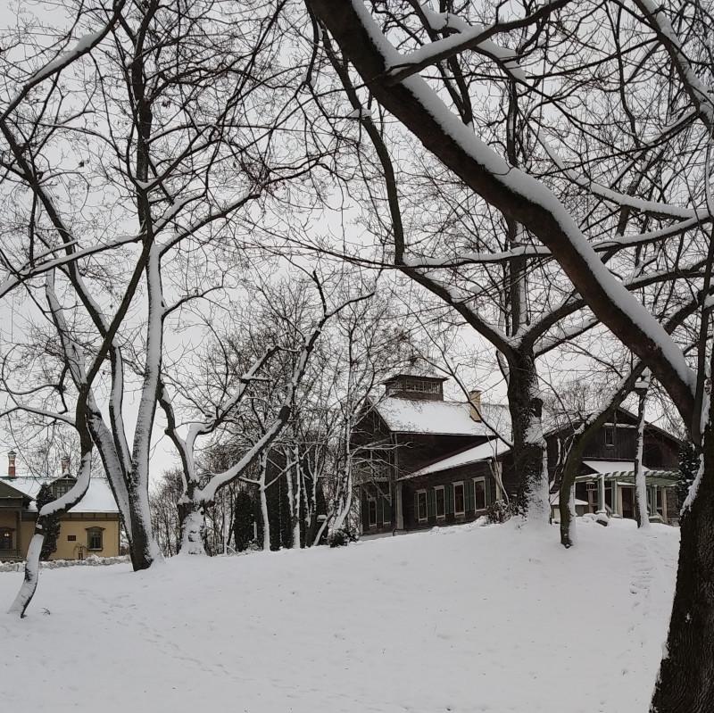 Дом справа называется флигель. Это самое старинное здание сохранившееся от прежнего времени и, при этом, из дерева.