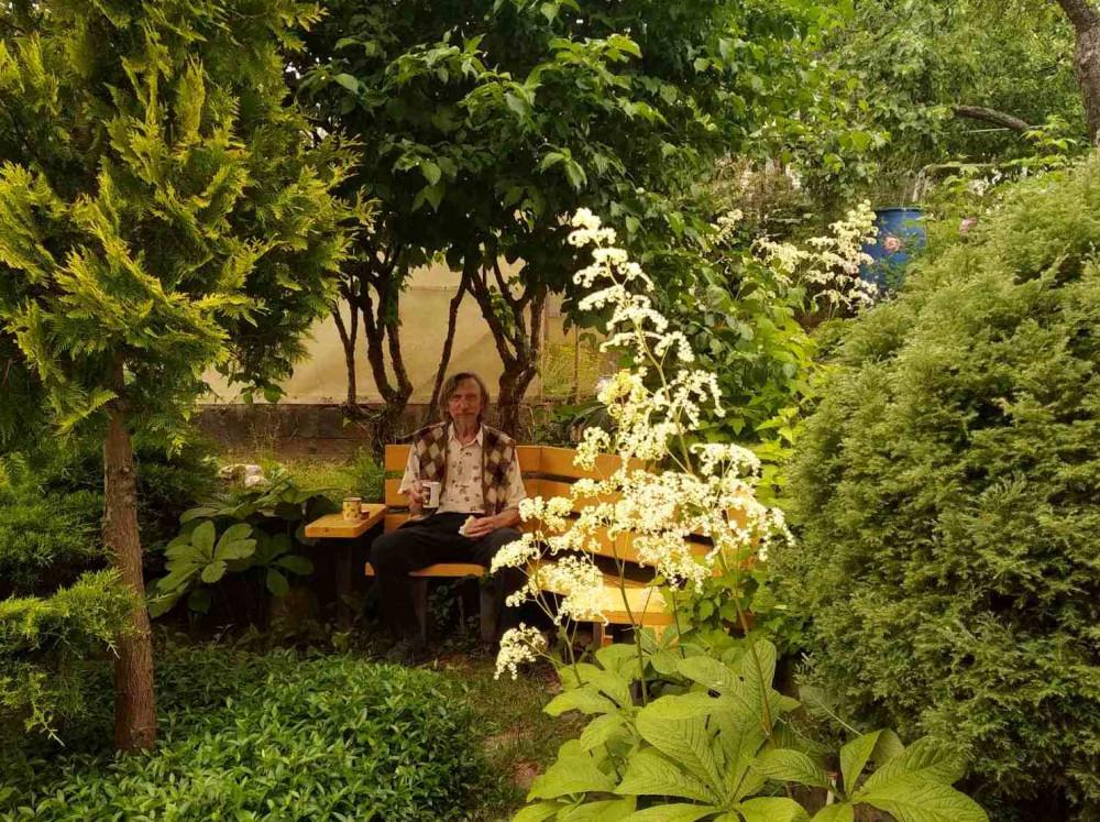 Гостям тоже нравится наша кофейная скамеечка. На переднем плане - Роджерсия.