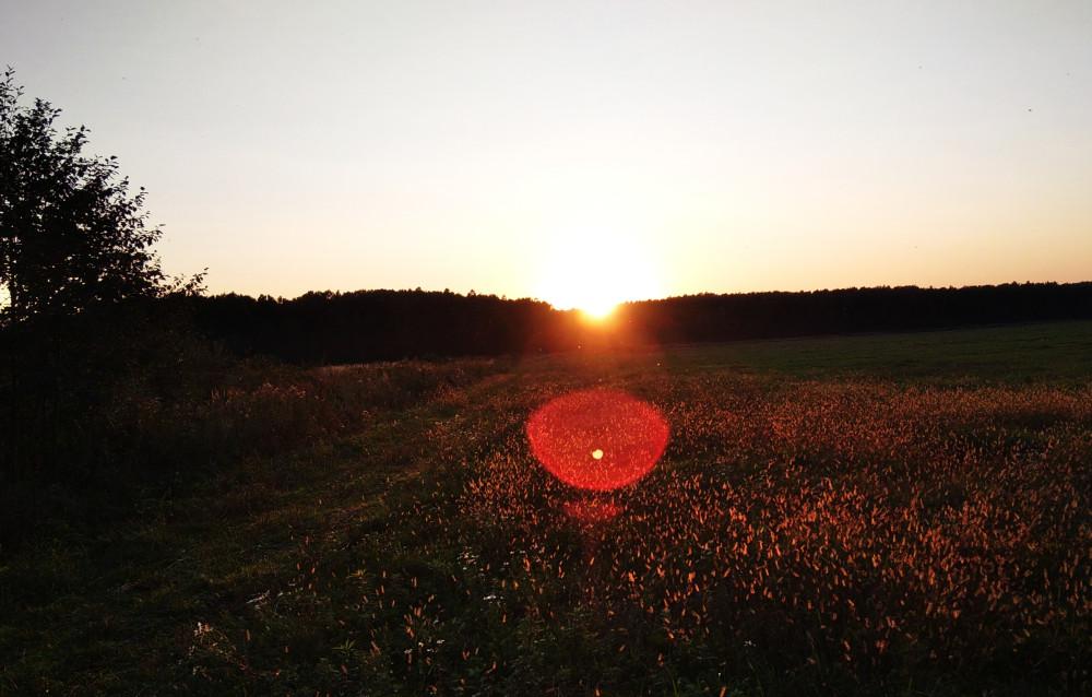 Попытка сфотографировать вечернее солнце