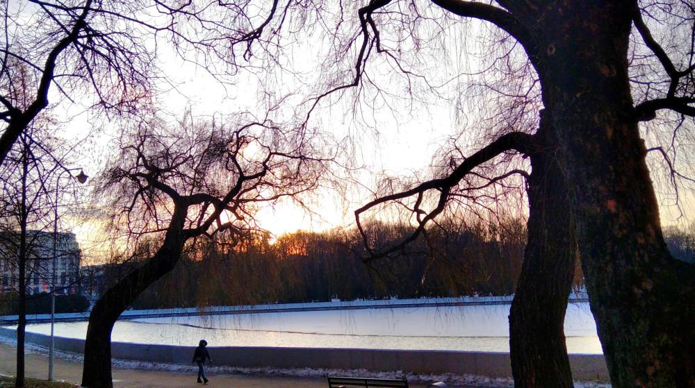 Солнце уже за деревьями.