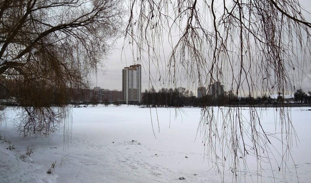 Взгляд назад. Видна застройка по ул. Маяковского