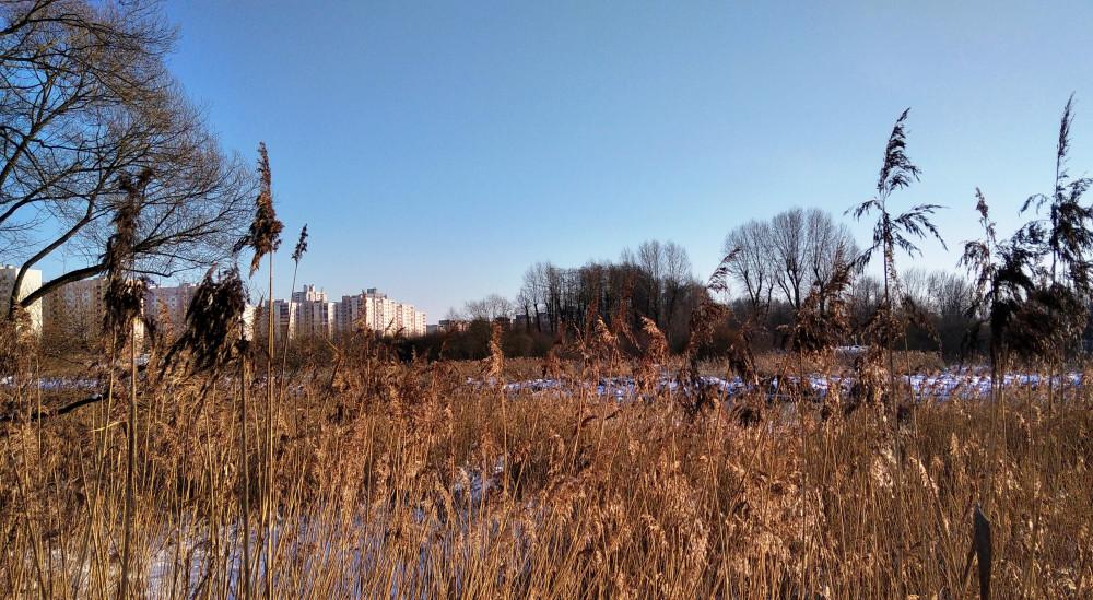 Вдоль берега пройти почти невозможно из-за зарослей тростника и зыбкой, даже зимой, почвы.