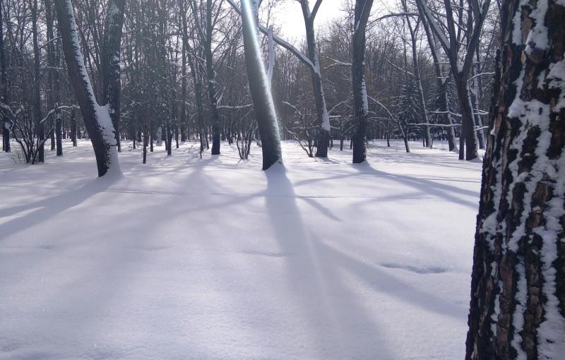 Снежная целина.