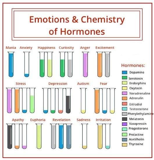 химия емоцій