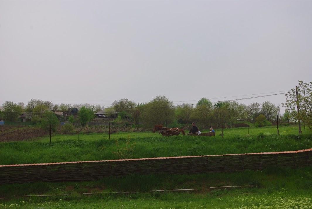 Ходжинешти, Молдова