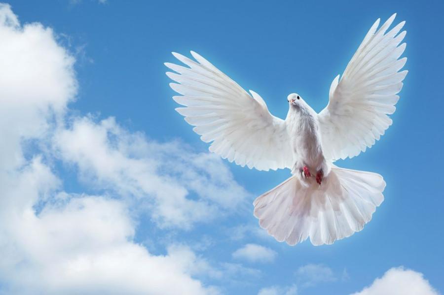 А открытки с голубками все летят ко мне из детства текст, хенд-мейд