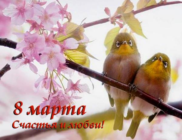 Открытки 8 марта птицы