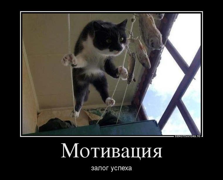 3622783_motivatsiya