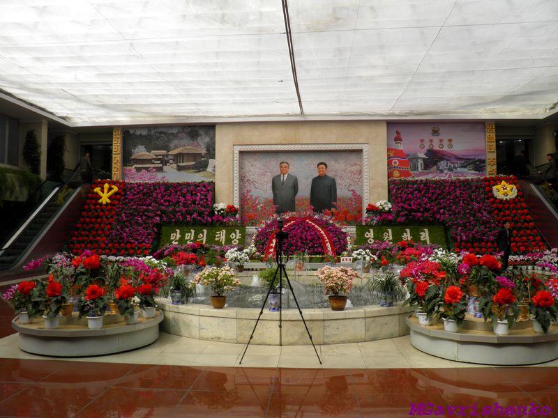 выставка цветов9