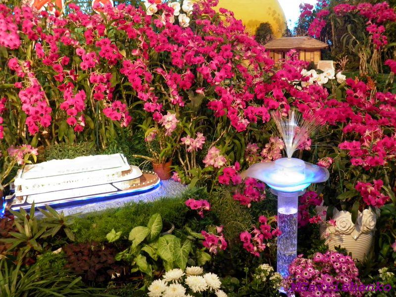 выставка цветов6