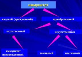 iskusstvennyj_immunitet
