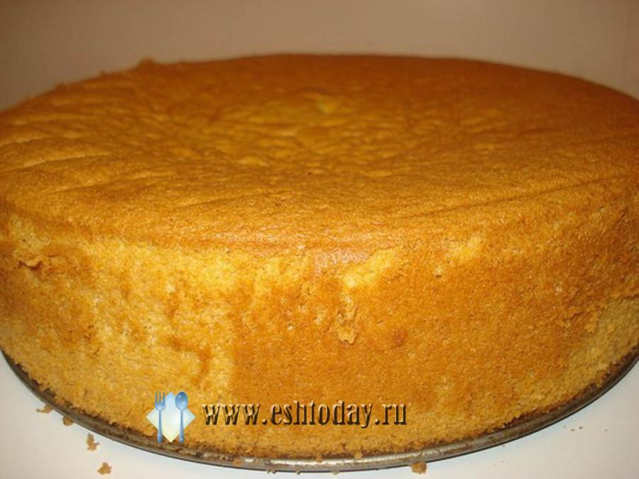 Бисквитные торты для мультиварок