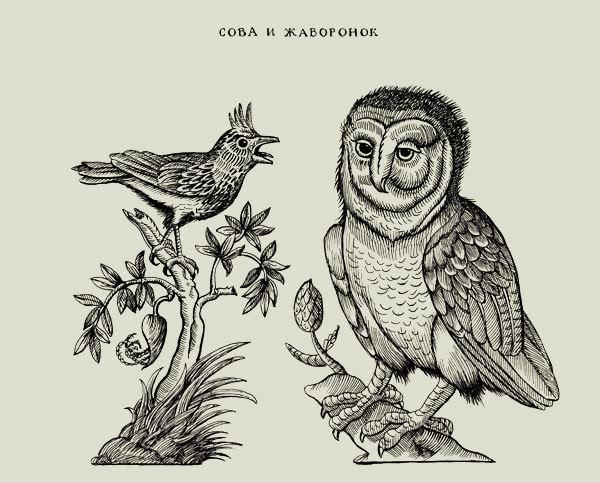 Бумаги, открытки сова и жаворонок