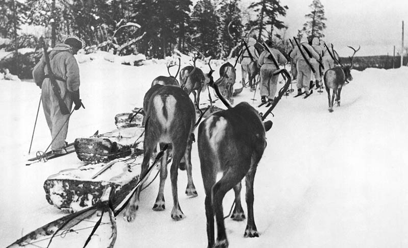 winter-war-finnish-soldiers-on-skis-with-reindeer