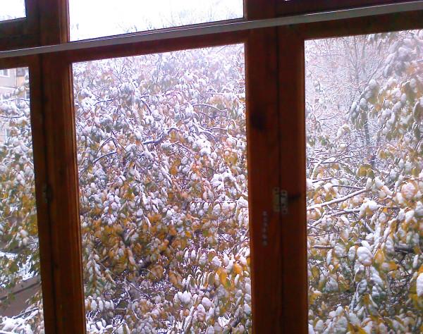 А вот и первый снег.