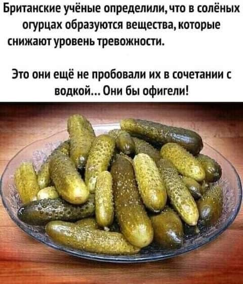 https://ic.pics.livejournal.com/general_ivanov1/84382899/1441351/1441351_original.jpg