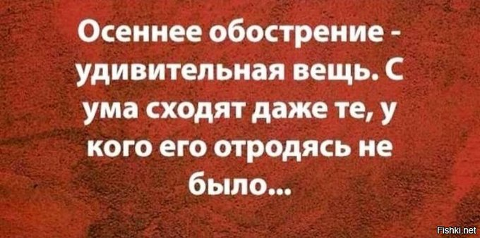 https://ic.pics.livejournal.com/general_ivanov1/84382899/1457653/1457653_original.jpg
