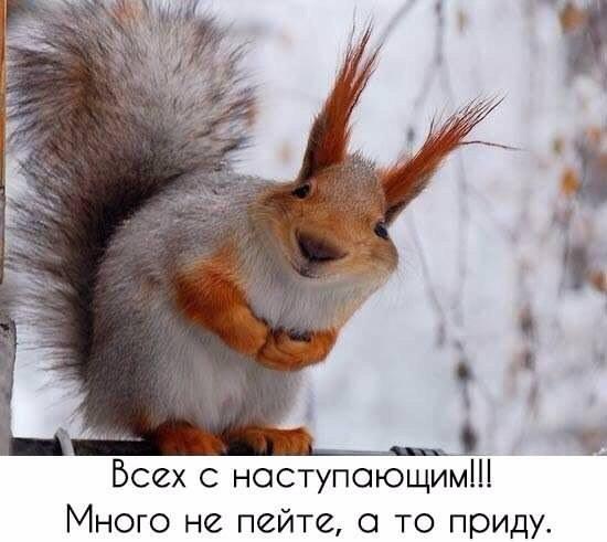 https://ic.pics.livejournal.com/general_ivanov1/84382899/873922/873922_original.jpg