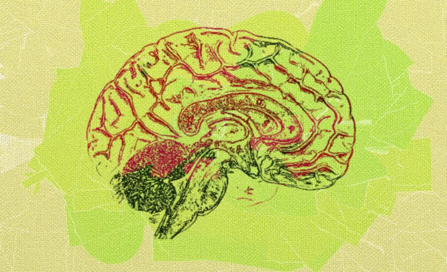 Мозговой штурм - Национальная гвардия или Национальный резерв?