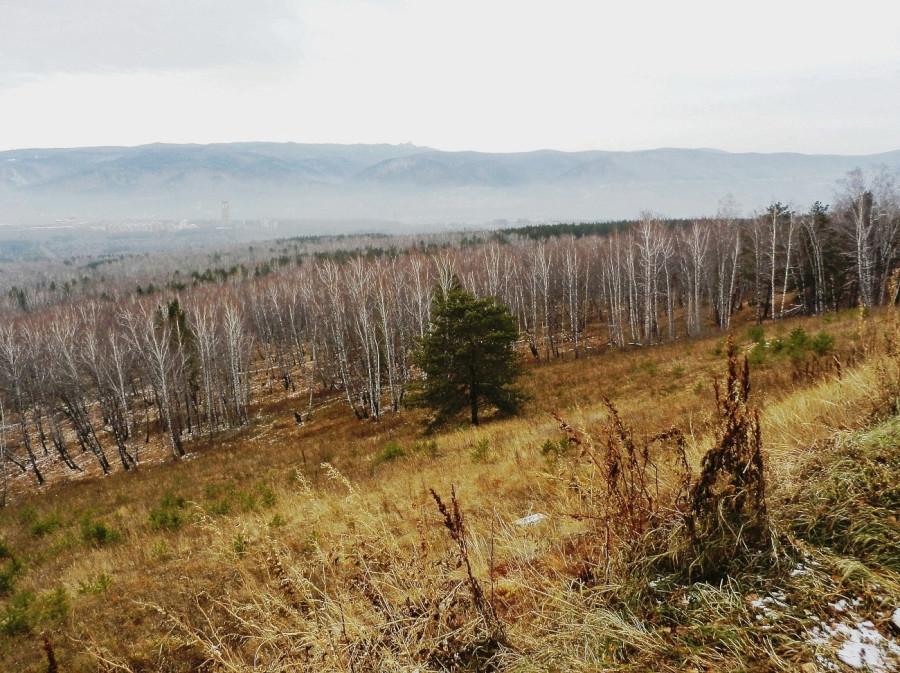 Фото Николай Юрлов Вид с Николаевской сопки