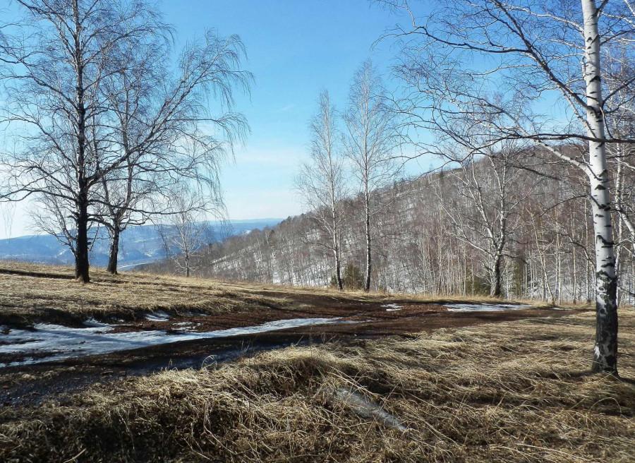 Копия Фото Николай Юрлов Весенний пейзаж