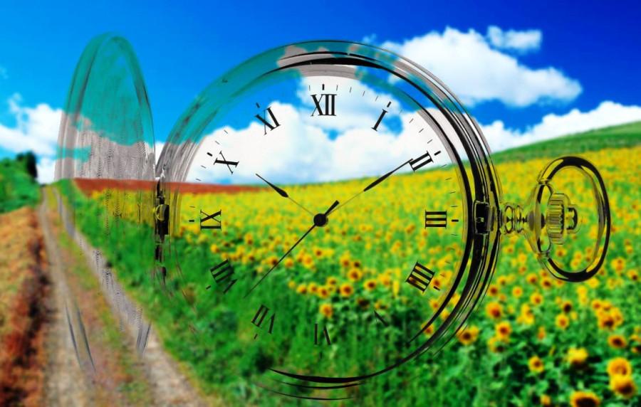 Часы среди поля