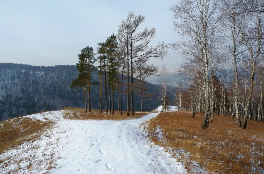 Фото Николай Юрлов Развилка у дороги