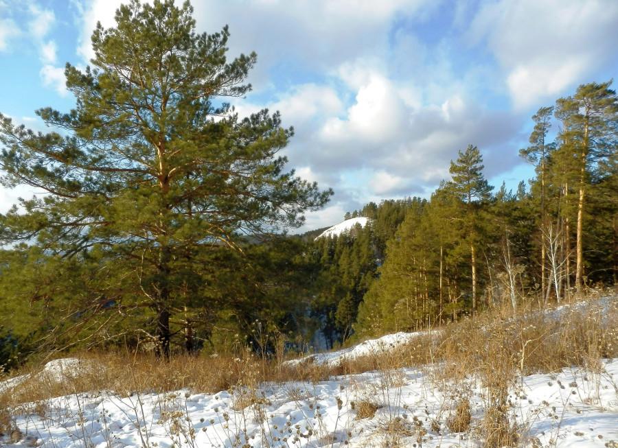 Фото Николай Юрлов Панорама у Гремячей гривы