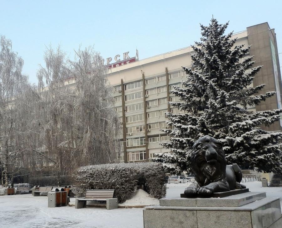 Фото Николай Юрлов Лев