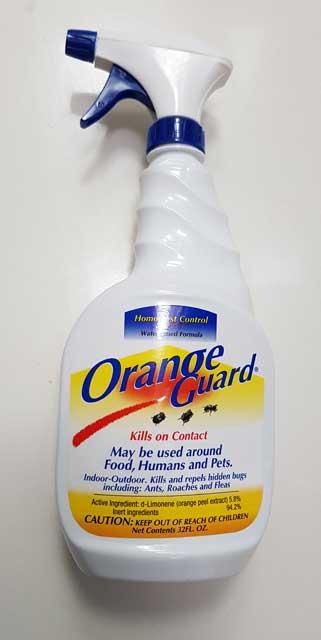 orange-guard-2.jpg