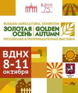 8 октября Золотвя осень