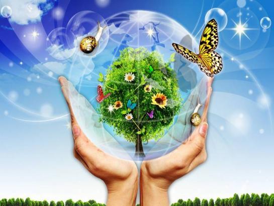 Картинки по запросу Программа Нового Мира ЭДЕМ