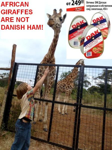 Giraffes not Danish ham